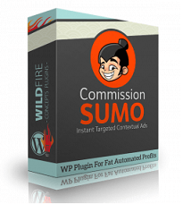 Commission Sumo by Cindy Donovan